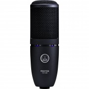 AKG Perception 120USB