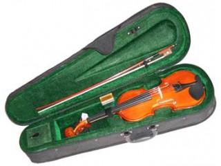 Скрипки  JULIA VL3/4 c доставкой по России