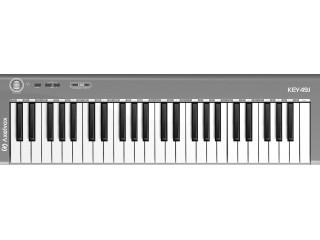 MIDI Клавиатуры  Axelvox KEY49j grey  c доставкой по России