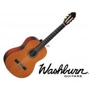 WASHBURN C5