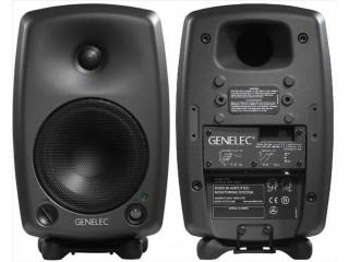 Студийные мониторы  GENELEC 8030BPM c доставкой по России