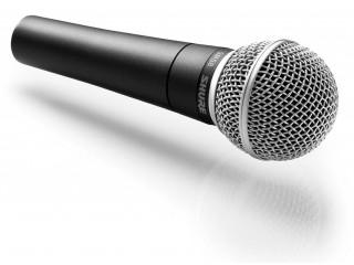 Вокальные микрофоны  SHURE SM58-LCE c доставкой по России