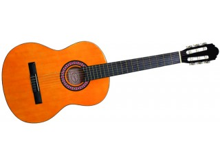Классические гитары Vision Classic 10 c доставкой по России