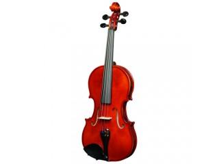 Скрипки  Strunal 205wA-4/4 c доставкой по России