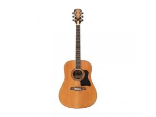 Акустические гитары CRUSADER CF-510 FM c доставкой по России