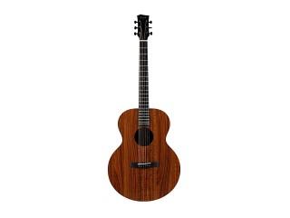 Акустические гитары Enya EA-X1 c доставкой по России