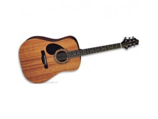 Акустические гитары GregBennett D1/LH c доставкой по России