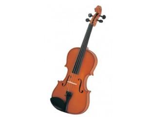 Скрипки  Partita MV012R-1/2  c доставкой по России
