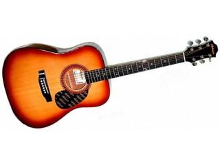 Акустические гитары Hohner HW220SB c доставкой по России