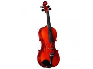 Скрипки  Strunal 15w-4/4 c доставкой по России