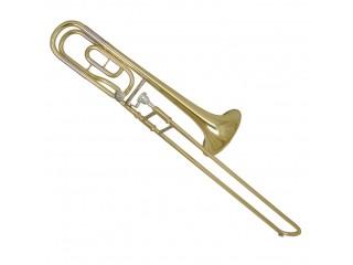 Тромбоны WISEMANN DTB-250 c доставкой по России