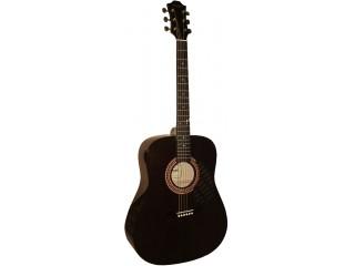 Акустические гитары Hohner HW220TBK c доставкой по России
