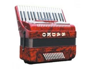 Баяны, аккордеоны  SADKO YJB 6996 c доставкой по России