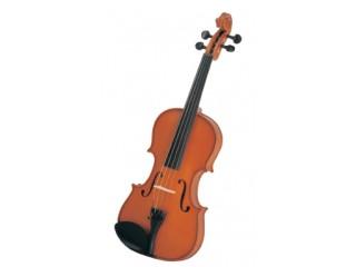 Скрипки  Partita 3/4 c доставкой по России