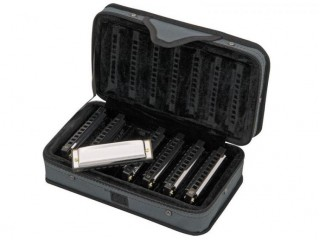 Губные гармошки  Hohner M91105 Blues Harmonica set c доставкой по России